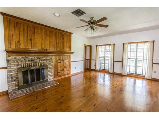 Single Family Home, Ranch,Traditional - LITHIA, FL (photo 3)