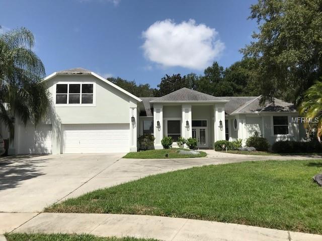 Florida,Traditional, Single Family Residence - VALRICO, FL
