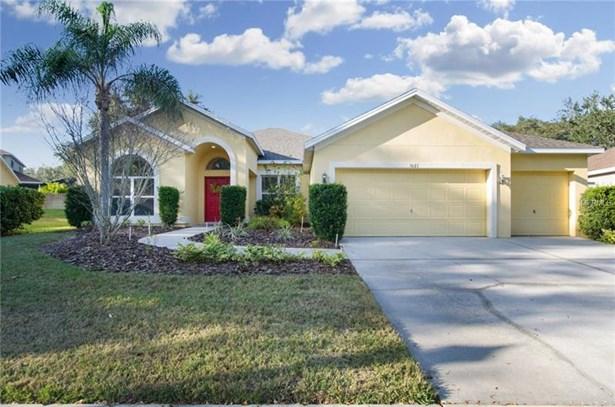 Single Family Home, Contemporary - VALRICO, FL (photo 1)