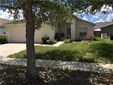 Single Family Home, Florida,Traditional - VALRICO, FL (photo 1)