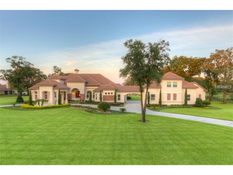 Single Family Home, Spanish/Mediterranean,Traditional - VALRICO, FL (photo 1)
