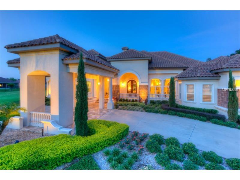Single Family Home, Spanish/Mediterranean,Traditional - VALRICO, FL (photo 3)