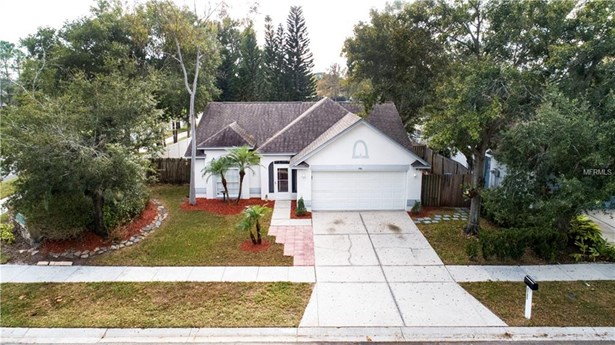Single Family Residence, Contemporary - BRANDON, FL