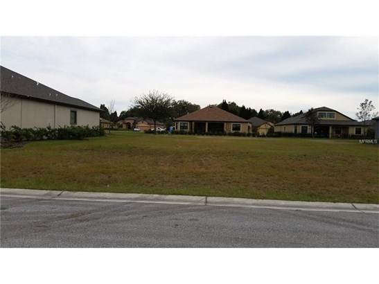 Single Family Use - LAND O LAKES, FL (photo 1)