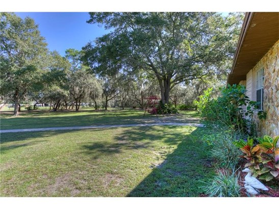 Single Family Home, Ranch - RIVERVIEW, FL (photo 3)