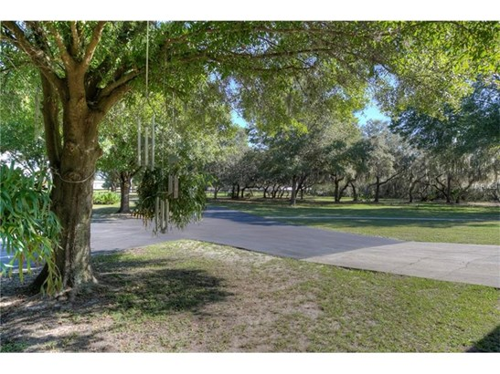 Single Family Home, Ranch - RIVERVIEW, FL (photo 4)