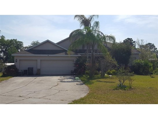 Single Family Home, Contemporary - WIMAUMA, FL (photo 1)