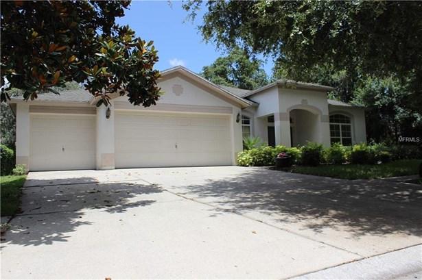 Single Family Residence, Contemporary - LITHIA, FL (photo 1)