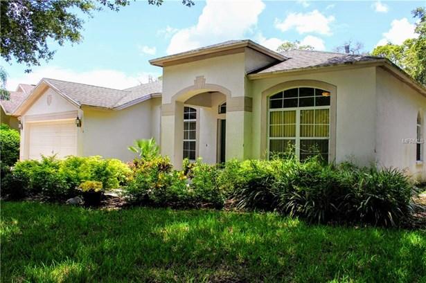 Single Family Residence, Contemporary - LITHIA, FL (photo 2)