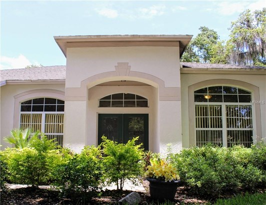 Single Family Residence, Contemporary - LITHIA, FL (photo 3)