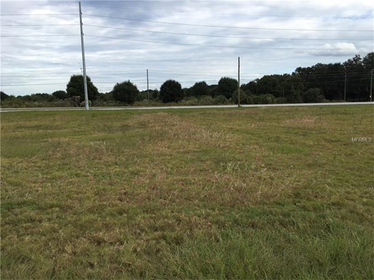 Residential Development - PLANT CITY, FL (photo 2)