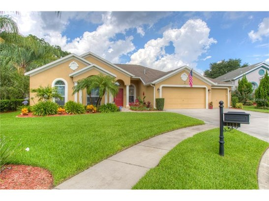 Single Family Home, Florida,Traditional - VALRICO, FL (photo 1)