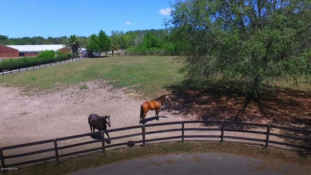 Farm - Ocala, FL (photo 1)