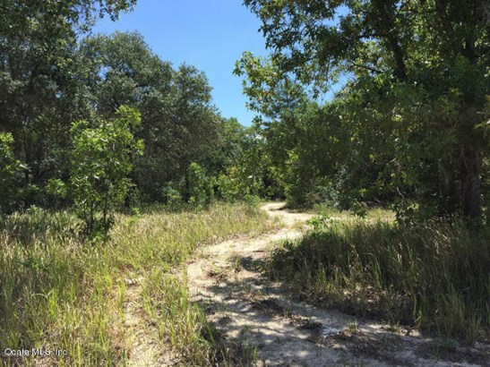Vacant Land - Summerfield, FL (photo 1)