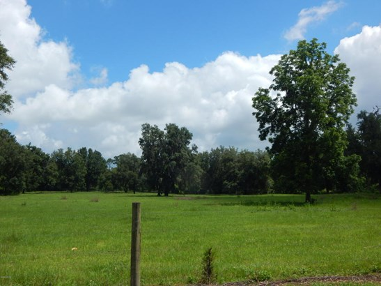 Vacant Land - Williston, FL (photo 1)