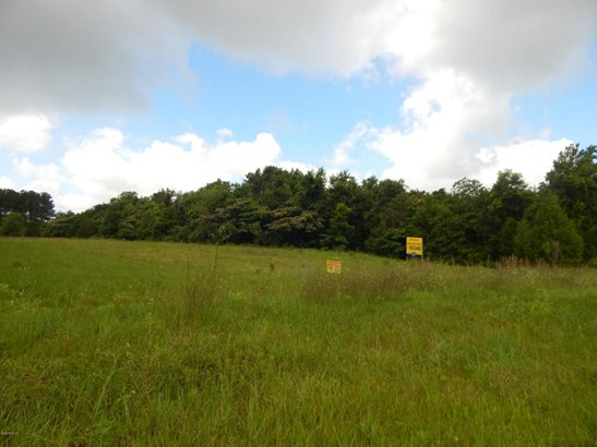 Vacant Land - Williston, FL (photo 2)