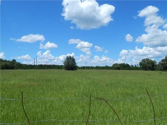 Farmland - PAISLEY, FL (photo 2)