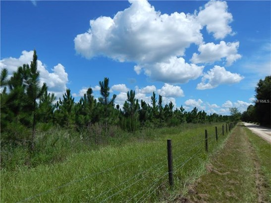 Farmland - PAISLEY, FL (photo 4)
