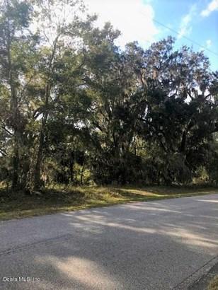 Vacant Land - Ocklawaha, FL (photo 4)
