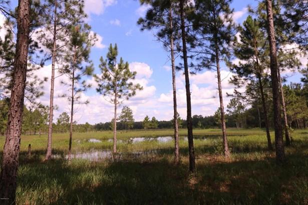 Farm - Ocklawaha, FL (photo 2)