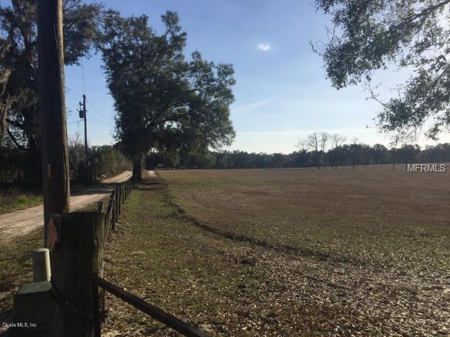 Land - OCALA, FL (photo 4)