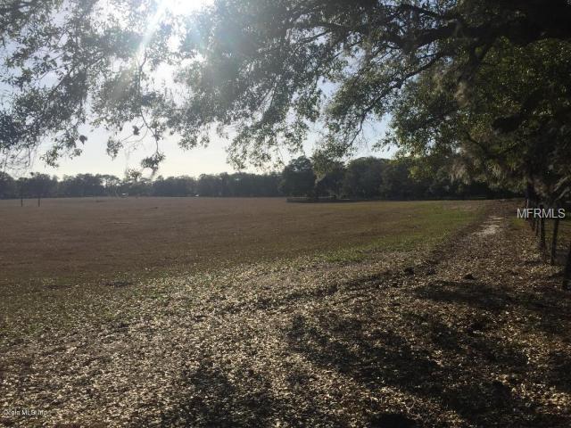 Land - OCALA, FL (photo 5)