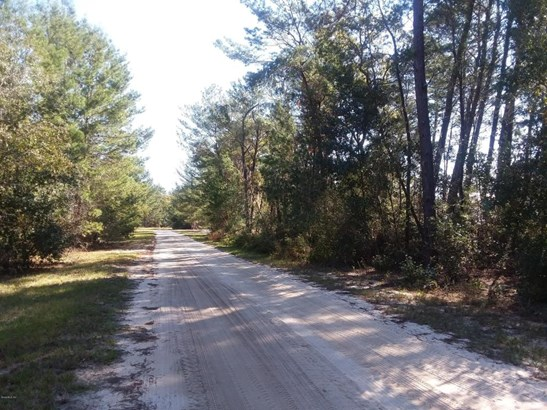 Vacant Land - Interlachen, FL (photo 3)