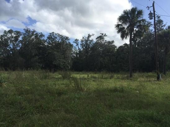 Vacant Land - Altoona, FL (photo 1)