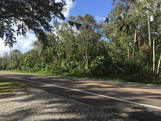 Vacant Land - Altoona, FL (photo 2)