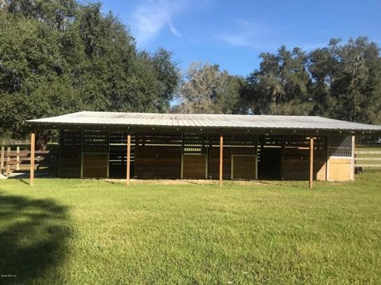 Farm - Williston, FL (photo 2)