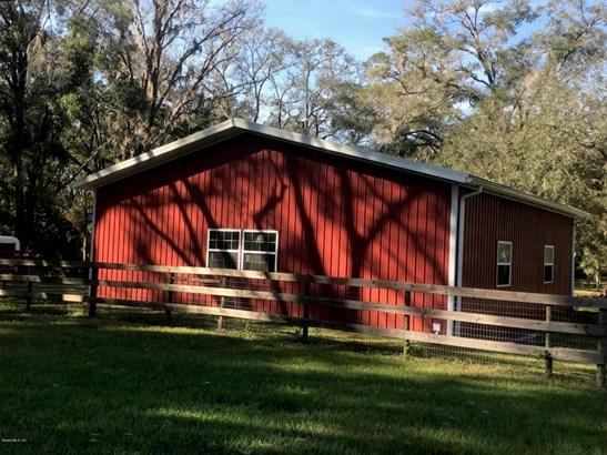 Farm - Williston, FL (photo 4)