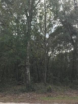 Vacant Land - Ocklawaha, FL (photo 5)