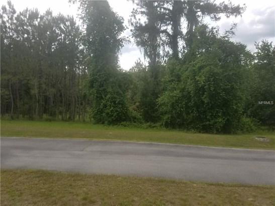 Residential - HERNANDO, FL (photo 2)