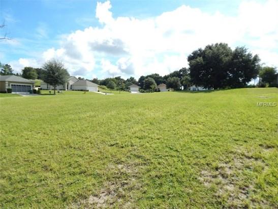 Single Family Use - UMATILLA, FL (photo 4)
