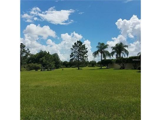 Single Family Use - LADY LAKE, FL (photo 1)