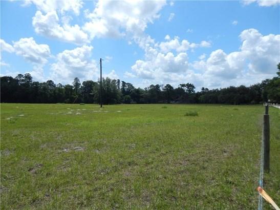 Unimproved Land - PAISLEY, FL