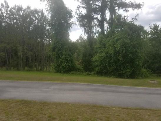 Vacant Land - Hernando, FL (photo 2)