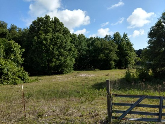 Vacant Land - Weirsdale, FL (photo 1)
