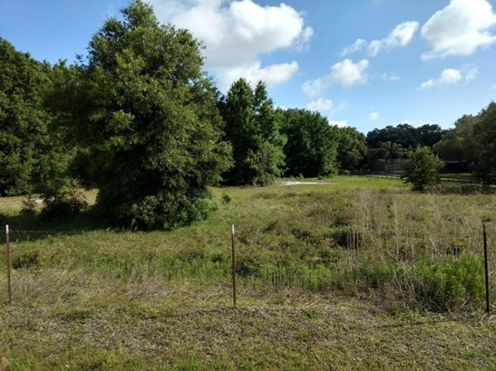 Vacant Land - Weirsdale, FL (photo 2)