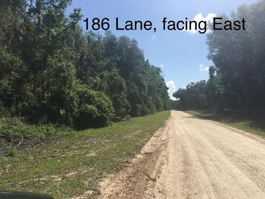 Vacant Land - Citra, FL (photo 2)