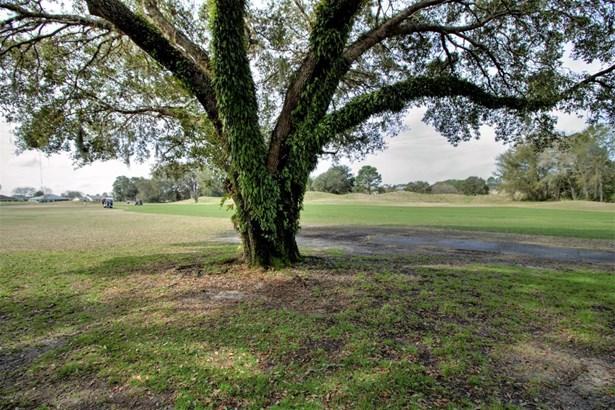 Golf Course Community - Summerfield, FL (photo 5)