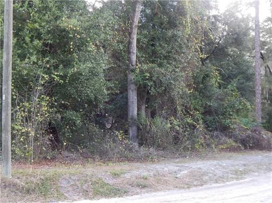 Mixed Use - PAISLEY, FL (photo 2)