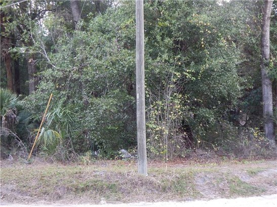 Mixed Use - PAISLEY, FL (photo 5)