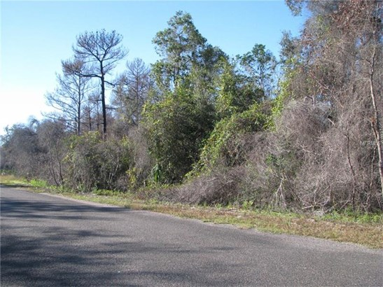 Tree Farm - OCKLAWAHA, FL (photo 4)