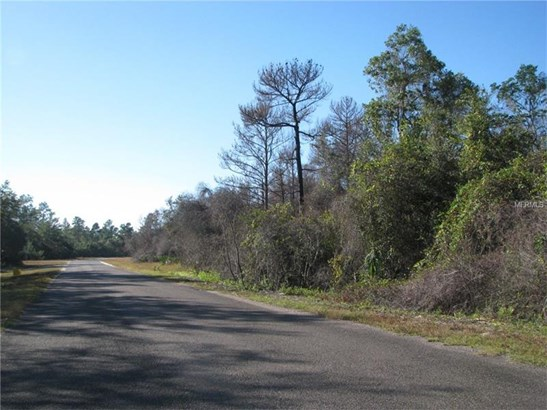 Tree Farm - OCKLAWAHA, FL (photo 5)