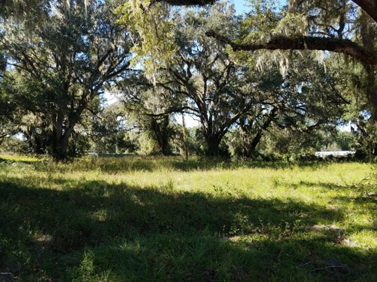 Vacant Land - Citra, FL (photo 2)