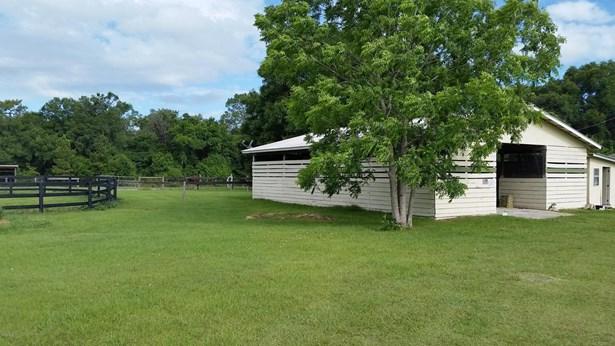 Farm - Morriston, FL (photo 3)