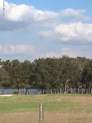 Vacant Land - Ocklawaha, FL (photo 3)