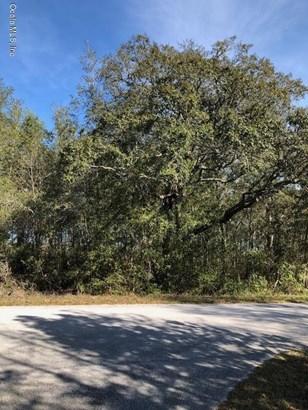 Vacant Land - Dunnellon, FL (photo 2)