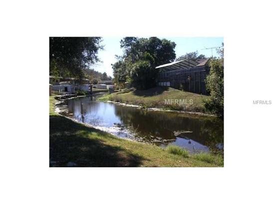 Single Family Use - FRUITLAND PARK, FL (photo 1)